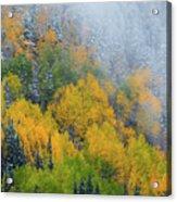Autumn Fog And Snow Acrylic Print