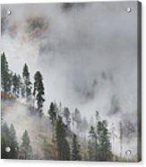Autumn Fog Acrylic Print