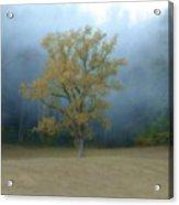 Autumn Fog In Cades Cove Acrylic Print