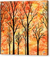 Autumn Forest Abstract  Acrylic Print