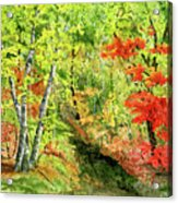 Autumn Fun Acrylic Print