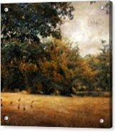 Autumn Geese Acrylic Print