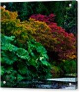 Autumn Has Begun Acrylic Print