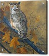 Autumn Highlights - Great Horned Owl Acrylic Print