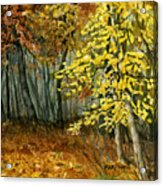 Autumn Hollow I Acrylic Print