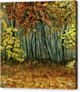 Autumn Hollow Acrylic Print