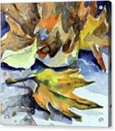 Autumn II Acrylic Print