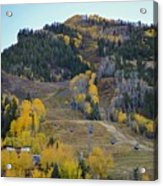 Autumn In Aspen Acrylic Print