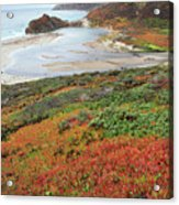 Autumn In Big Sur California Acrylic Print by Pierre Leclerc Photography
