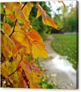 Autumn In Ellenberger Acrylic Print