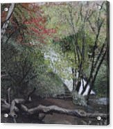 Autumn In Japan Acrylic Print