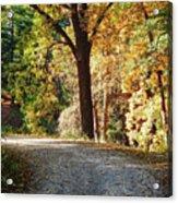 Autumn In Michigan Acrylic Print