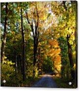 Autumn In Missouri Acrylic Print