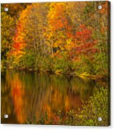 Autumn In Monroe Acrylic Print