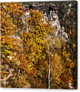 Autumn In Saxon Switzerland Acrylic Print