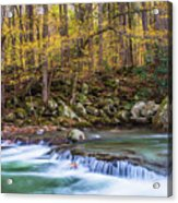 Autumn In Smoky Mountains National Park  Acrylic Print