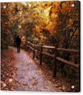 Autumn In Stride Acrylic Print