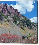 Autumn In The Aspen Hills Acrylic Print