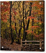 Autumn In The Rambles Acrylic Print