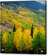 Autumn In The Rockies Acrylic Print
