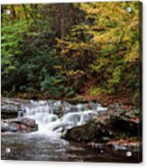 Autumn In The Smokies Acrylic Print by Andrew Soundarajan