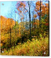 Autumn In The Tennessee Hills Acrylic Print