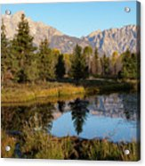 Autumn In The Tetons Acrylic Print