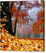 Autumn In The Woodland Acrylic Print