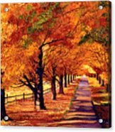 Autumn In Vermont Acrylic Print by David Lloyd Glover