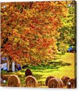 Autumn In West Virginia Acrylic Print