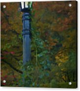 Autumn Lamp Acrylic Print