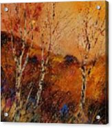 Autumn Landscape 45 Acrylic Print