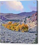 Autumn Landscape In Northern Nevada. Acrylic Print