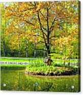 Autumn Landscape With Red Tree Acrylic Print