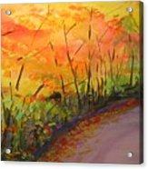 Autumn Lane IIi Acrylic Print