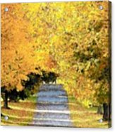 Autumn Lane Acrylic Print by Joyce Kimble Smith
