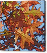 Autumn Leaves 17 - Variation  2 Acrylic Print
