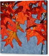 Autumn Leaves 19 Acrylic Print