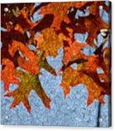 Autumn Leaves 20 Acrylic Print