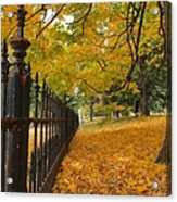 Autumn Leaves At Lafayette Park Acrylic Print