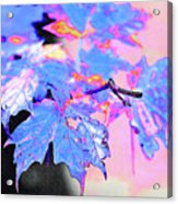 Autumn Leaves In Blue Acrylic Print