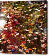 Autumn Leaves Reflections Acrylic Print