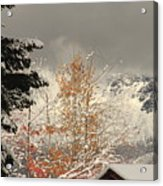 Autumn Leaves Winter Snow Acrylic Print
