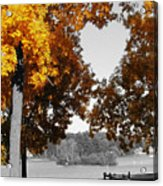 Autumn Love  Acrylic Print