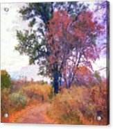 Autumn Melancholy Acrylic Print