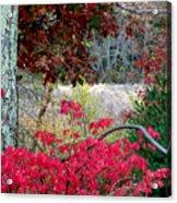 Autumn Mixtures Acrylic Print
