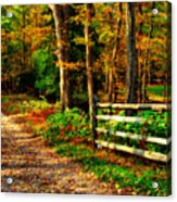Autumn Moment - Allaire State Park Acrylic Print