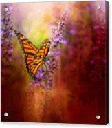 Autumn Monarch Acrylic Print