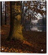 Autumn Morning In Park Branitz Acrylic Print