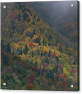 Autumn Mountains Acrylic Print